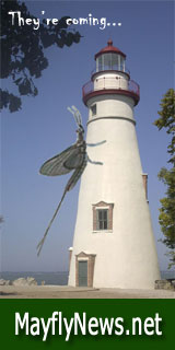 MayflyNews.net - your source for the latest new on Lake Erie Mayflies